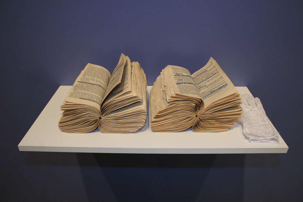 Twilight Illusions - Books, sculpture, installation - 2010